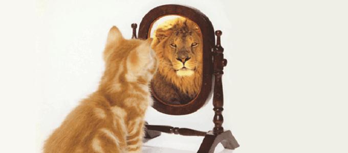 Grow Your Self Esteem