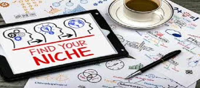 how to choose the right niche